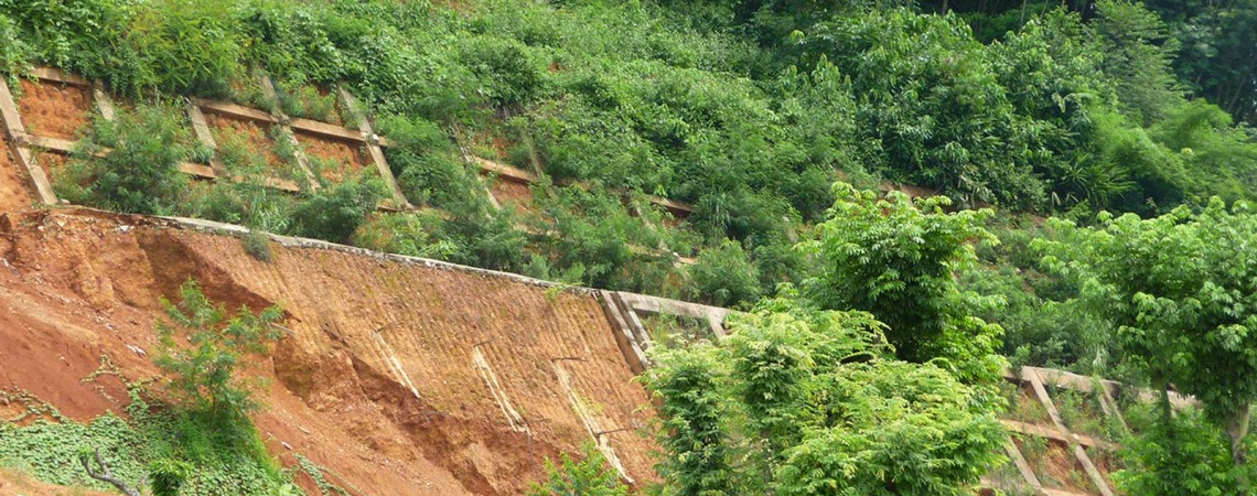 China- Eco-Engineering for slope stabilisation